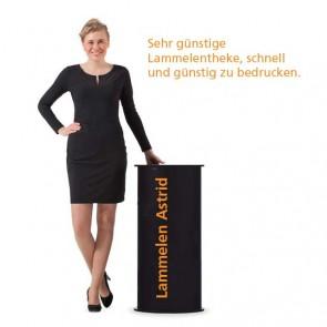 Rundtheke, für Multmedea-Präsentationen, Prospektständer, Visitenkartenbox